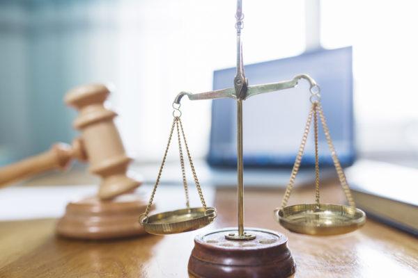 LA ORGANIZACIÓN JUDICIAL