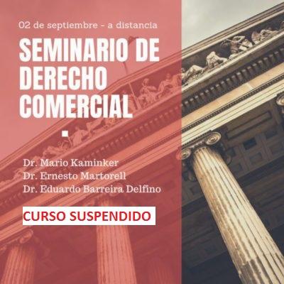 Seminario de DERECHO COMERCIAL